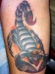 scorpion tattoo dallas